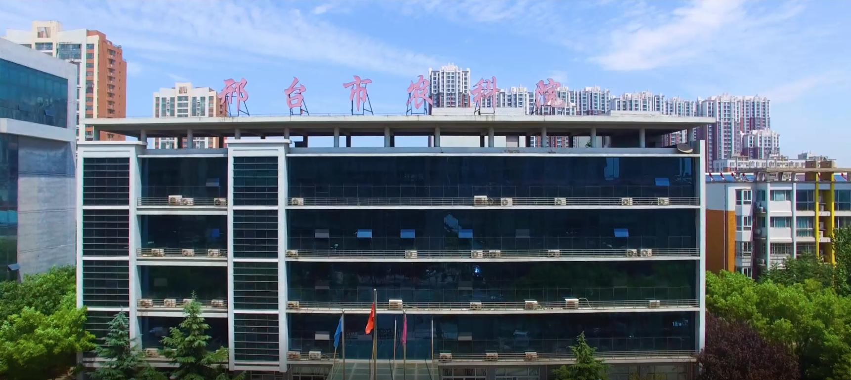 邢台市农科院科技创新宣传片